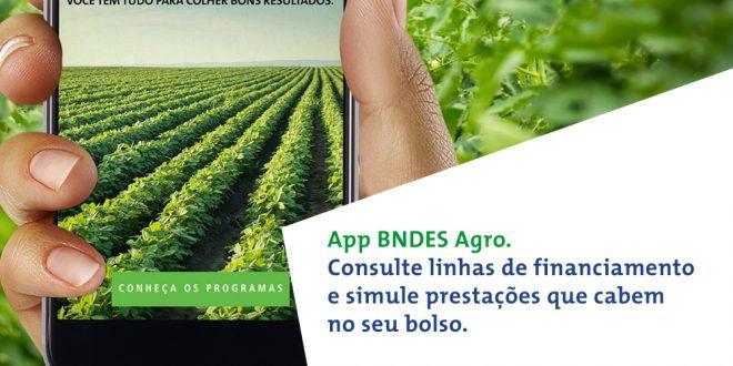 Novo aplicativo do BNDES é assinado pela nova/sb