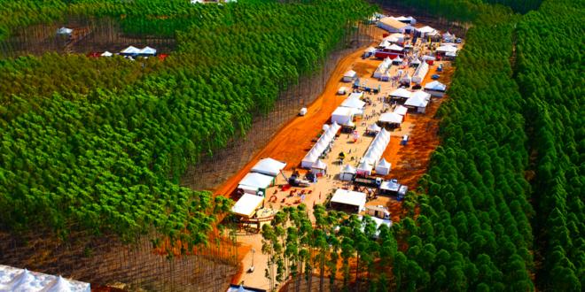 Brasil terá a maior feira florestal dinâmica do mundo em 2018