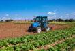 LS Tractor – Hortifrutitrator é a tecnologia sob medida para a hortifruticultura