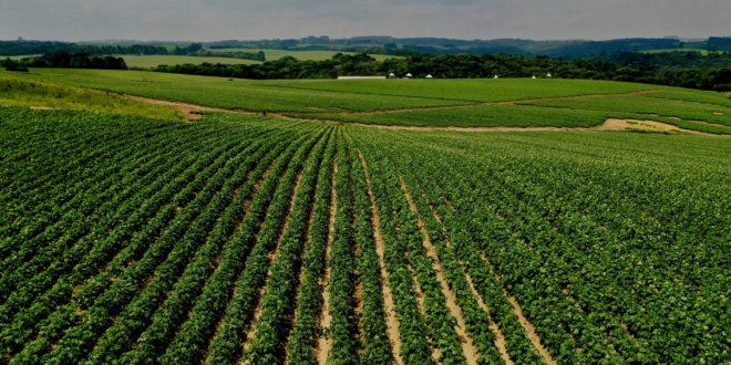 PepsiCo anuncia meta de implantar práticas agrícolas regenerativas em 2.8 milhões de hectares até 2030