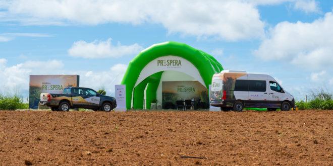 Programa Prospera anuncia novos mantenedores e expande atuação para capacitação  de pequenos agricultores do Nordeste